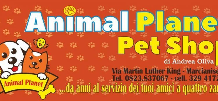 Animal Planet di Andrea Ferone